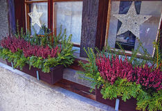 Potted plants on window with Christmas decoration in Thun City. Thun is a city in Swiss canton of Bern, where Aare river flows out of Lake Thun. Town Hall Stock Images