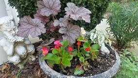 Potted red begonias and purple astilbe beside white plaster Pan with flute and other greens in spring garden bed. With other bushes and sidewalk behind Royalty Free Stock Images