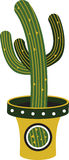 Potted Saguaro Royalty Free Stock Images