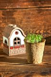 Potted seedlings growing in peat moss pot and house. On wood Royalty Free Stock Photography
