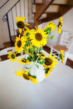 Potted sunflower Stock Photos
