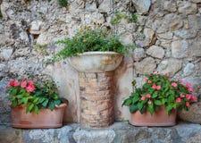 Potten van bloemen dichtbij een muur Stock Afbeeldingen