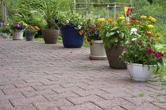 Potten van bloemen op het terras Royalty-vrije Stock Fotografie