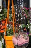 Potten van bloemen op vertoning Stock Foto's