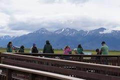 Potter Marsh Wildlife Refuge Anchorage Alaska royalty free stock image