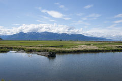 Potter Marsh Wildlife Refuge Anchorage Alaska Stock Photography