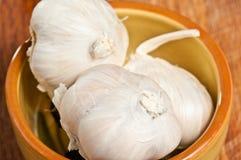 Pottery bowl of three garlic heads stock image