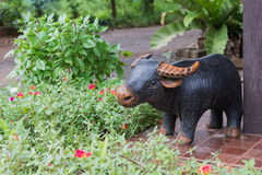 The pottery of buffalo in the garden for decoration Royalty Free Stock Photo