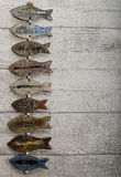 Pottery fish hang on the wooden wall Royalty Free Stock Image
