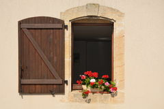 Pottet Geranium In Window Royalty Free Stock Images