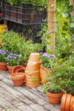 Potting area Stock Images