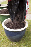 Potting Compost Stock Image