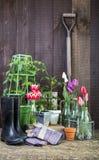 Potting-Hallen-Szene Stockfotos