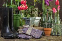Potting Shed Garden Scene background Royalty Free Stock Images