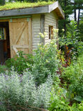 Potting Shed with Roof Garden Stock Images
