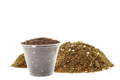 Potting soil for growing plant Royalty Free Stock Images