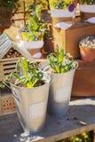 Potting table Stock Photo