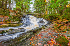 Potts Falls in Fall Stock Images