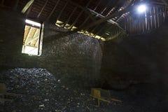 Poubelle de charbon Images stock
