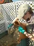 Poubelle de compost Photos libres de droits