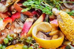 Poubelle de compost Images libres de droits