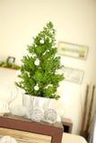 Pouca árvore de Natal Fotos de Stock Royalty Free
