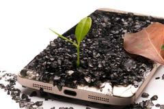 pouca árvore que cresce no conceito quebrado do smartphone, do ambiente, do conhecimento, da inovação e da tecnologia com espaço  fotos de stock
