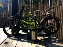 Pouca bicicleta Imagens de Stock