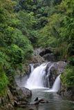 Pouca cachoeira Fotos de Stock Royalty Free