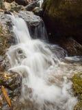 Pouca cachoeira da floresta úmida no parque nacional, Saraburi, Tailândia Imagens de Stock