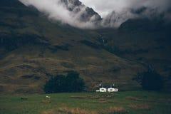Pouca casa branca da cor e perto do verde arquivou com os carneiros que andam ao redor Imagens de Stock