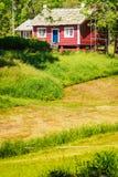 Pouca casa de campo rural no campo verde Fotos de Stock Royalty Free