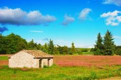 Pouca casa de pedra Imagem de Stock