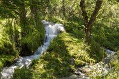 Pouca cascata que corre no Patagonia Argentina Foto de Stock Royalty Free