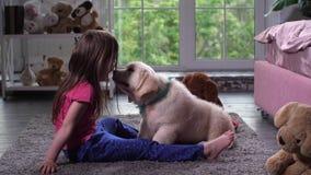 Pouca criança que tem o divertimento com o animal de estimação do cachorrinho no tapete vídeos de arquivo