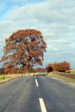 Pouca estrada Fotos de Stock