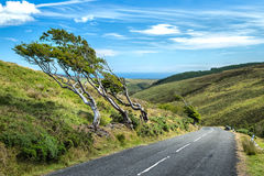 Pouca estrada da montanha Fotos de Stock Royalty Free