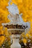 Pouca fonte no fundo das folhas de outono Imagens de Stock Royalty Free