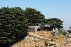 Pouca igreja no bosque do cedro, Líbano Imagens de Stock