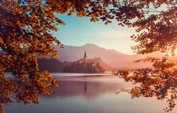 Pouca ilha com a igreja Católica no lago sangrado, Eslovênia na SU Imagens de Stock