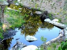 Pouca lagoa Fotografia de Stock Royalty Free