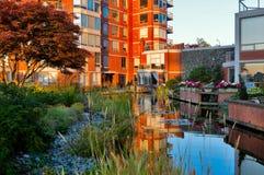 Pouca lagoa na frente da construção residencial Fotos de Stock Royalty Free