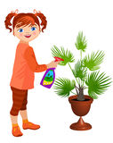 Pouca palmeira do girland Fotografia de Stock Royalty Free