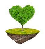 Poucas ilha e árvore no coração da forma Fotos de Stock