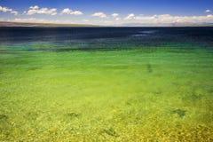 Pouce occidental en parc national de Yellowstone, Etats-Unis Photo stock