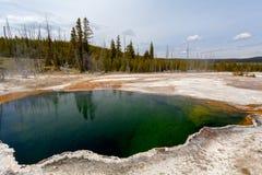 Pouce occidental, Yellowstone, Wyoming, Etats-Unis Images libres de droits