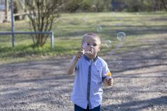 Pouco bolhas de sopro do menino bonito no parque imagem de stock royalty free