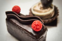 Pouco bolo de chocolate Foto de Stock Royalty Free