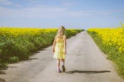 Pouco criança que anda no trajeto rural na natureza bonita do verão fotografia de stock royalty free