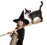 Pouco hallowen a bruxa Imagens de Stock Royalty Free